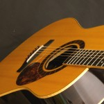 Schachle-Guitars- 113