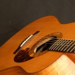 Schachle-Guitars- 117